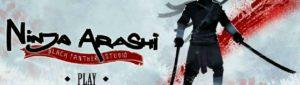 Ninja Arashi для ПК